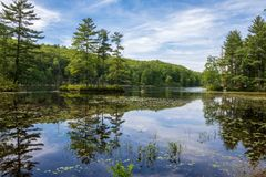 Free Trees Reflected In Breakneck Pond Royalty Free Stock Photo - 119141745