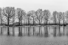 Trees reflected in the lake Royalty Free Stock Photography