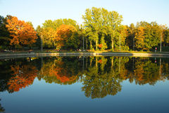 Trees reflected in a lake Stock Image