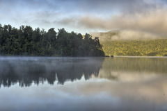 Trees reflected in Lake Kaniere Stock Images