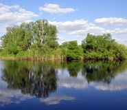 Trees reflected in the river. Green trees reflected in the river stock photos