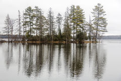 Trees reflected in Round Lake Royalty Free Stock Image