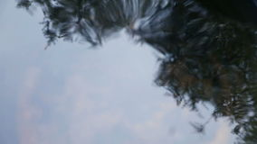 Trees reflected in water with ripples. Reflection of trees in a container of water stock video