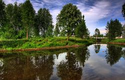 Trees reflecting Royalty Free Stock Images