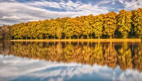 Trees reflecting from lake Royalty Free Stock Photos