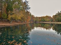 C. G. Hill Memorial Park. Trees reflecting in the lake at sunset. C. G. Hill Memorial Park in Pfafftown, North Carolina royalty free stock images
