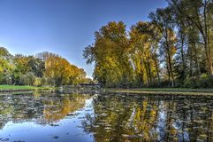 Trees reflecting in a pond. In a public park called Zuiderpark in Rotterdam, The Netherlands in autumn Royalty Free Stock Photography