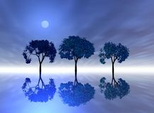 Trees reflecting on sea Stock Photos