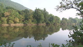 Trees reflecting on the water along the river embankment (1 of 2). A view or scene on the water stock footage