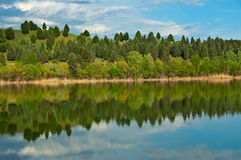 Trees Reflection. Colorful Trees in spring reflected on the water surface Stock Photography