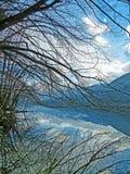 Trees Reflection at Bohinj Lake. Scenic view and beautiful nature at Bohinj Lake, Triglav National Park Stock Photo