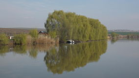 Trees reflection on a lake in Romania. There are some trees near a lake royalty free stock photography