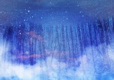 Trees reflection with stars Royalty Free Illustration