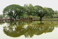 Trees reflection in water Sukhothai Stock Photography