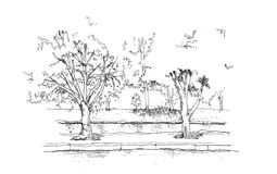 Trees and river canal hand drawing illustration Stock Photos