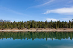 Trees on a River Shoreline. Looking across the calm waters of Trout Creek to a shoreline of fir trees and distant mountains in Montana Royalty Free Stock Image