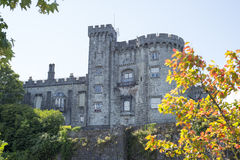 Trees and riverside view of kilkenny castle Stock Images