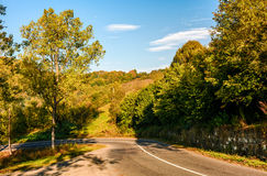 Trees by the road in autumn mountainous countryside. Dangerous transportation area Royalty Free Stock Photography