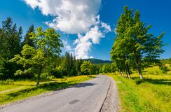 Trees by the road in mountains. Beautiful nature scenery in mountainous area. lovely transportation background. wonderful summer weather with some clouds on a Stock Photos