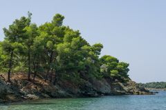 Trees on rock and blue sea water, Chalkidiki , Greece.  stock photos