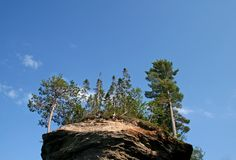 Trees on rock formation. Scenic view of tree on rock formation with blue sky background Royalty Free Stock Images