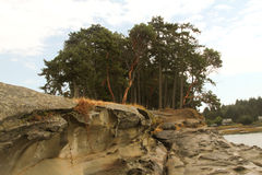 Trees and Rock Formation Royalty Free Stock Photos