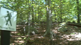 Trees and rocks along Nature Trail (2 of 2). A view or scene of a Nature Center stock video footage