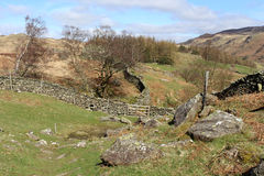 Trees, rocks, rough grazing, dry stone wall Royalty Free Stock Images