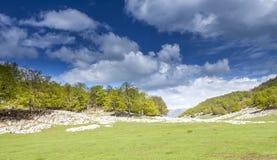 Trees and rocks. Spring view in Mehedinti, Romania Stock Photos