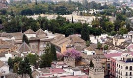 Trees and roofs. Aerial view of the city of Seville, are the roofs of the buildings next to Each Other with many trees and shrubs Royalty Free Stock Photos