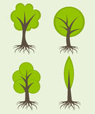 Trees with roots Royalty Free Stock Photos