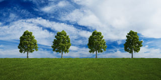 Trees on a row with summer clouds Stock Photography