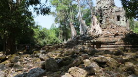 Trees and ruins of the temple, Siem Reap, Cambodia stock video