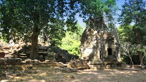 Trees and ruins of the temple, Siem Reap, Cambodia stock footage