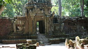 Trees and ruins of the temple, Siem Reap, Cambodia stock video footage