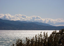 Trees sea and mountain. Trees and mountain overlooking the sea Stock Photo