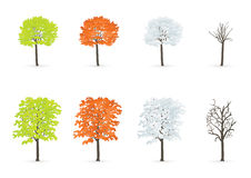 Trees in season Stock Images