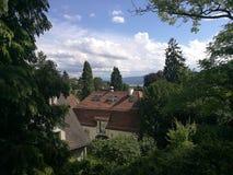 Trees See-Haus Lizenzfreies Stockbild