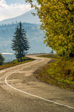 Trees on serpentine on autumn day. Lovely scenery in Carpathian countryside Stock Images