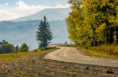 Trees on serpentine on autumn day. Lovely scenery in Carpathian countryside Royalty Free Stock Photos