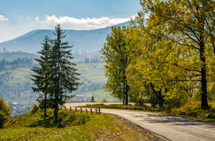 Trees on serpentine on autumn day. Lovely scenery in Carpathian countryside Stock Photos
