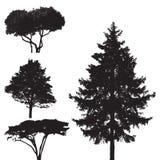 Trees -  set Royalty Free Stock Image