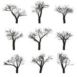 Trees Set Stock Photos