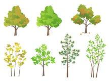 Trees set Stock Photos