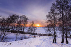 Trees and setting sun on the edge of a winter forest Stock Photo