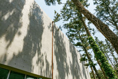 Trees Shadow Cast on Concrete Building Royalty Free Stock Images