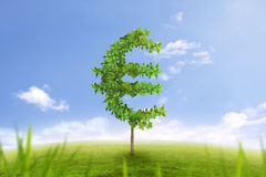 Trees in shape of euro sign business concept of growing prosperity. Financial growth and success on green summer natural green grass landscape with single trees Stock Photos