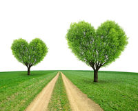Trees in the shape heart Royalty Free Stock Images
