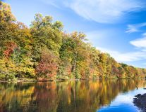 Trees on shore of Lake Surprise Royalty Free Stock Images