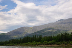 Trees on the shore, the mountains Stock Photography